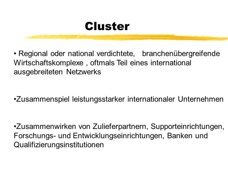 Cluster zerfolgreiche Firmen sind meistens Teil eines Cluster zregionale Wettbewerbsvorteile ergeben sich dann einfach aus der Anzahl der Cluster bzw.