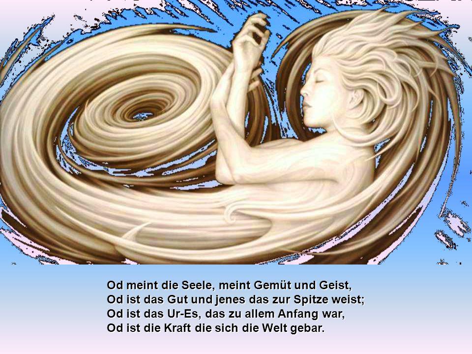 Hamingja nannten unsre Ahnen diese Geister, so lehrten's schon der Runen hehre Meister; auch Fylgja, Folgegeist galt als Benennung, doch wäre Od-Kind klar die beste Kennung.