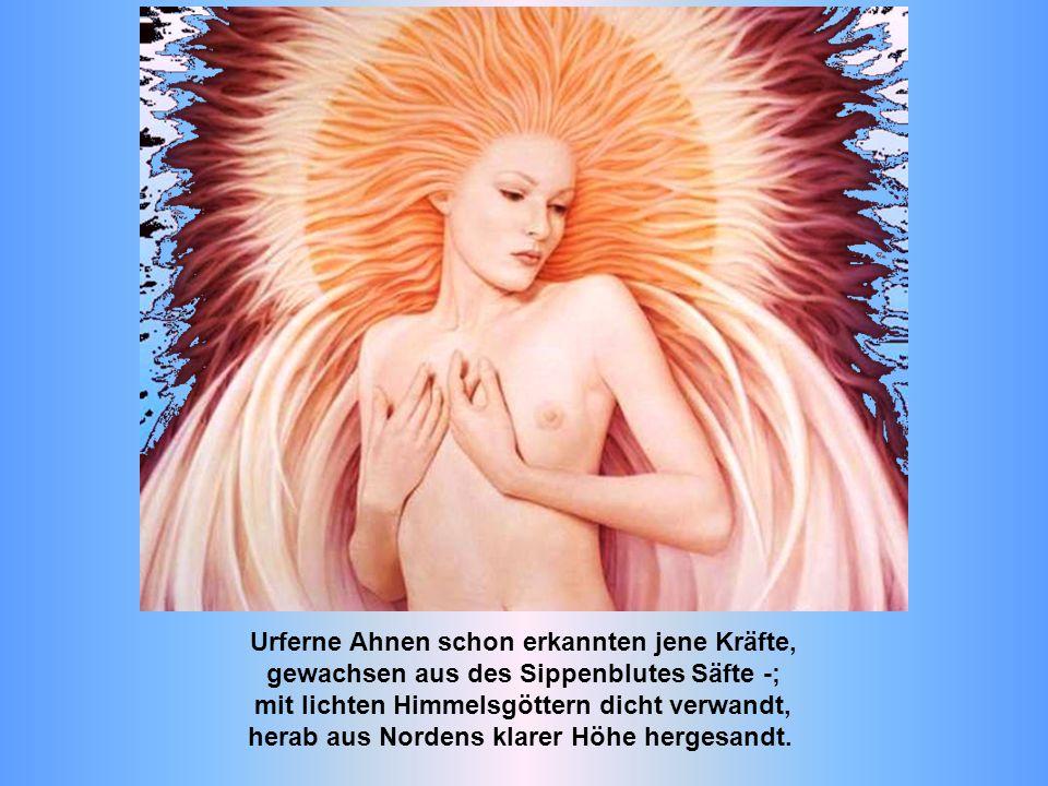 Urferne Ahnen schon erkannten jene Kräfte, gewachsen aus des Sippenblutes Säfte -; mit lichten Himmelsgöttern dicht verwandt, herab aus Nordens klarer Höhe hergesandt.