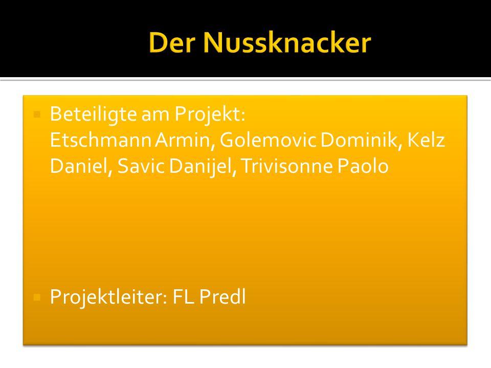  Beteiligte am Projekt: Etschmann Armin, Golemovic Dominik, Kelz Daniel, Savic Danijel, Trivisonne Paolo  Projektleiter: FL Predl  Beteiligte am Pr