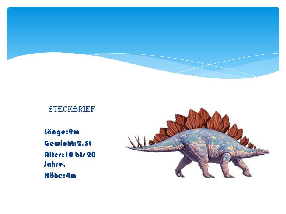An der Schwanzspitze hatte er zwei Paar mächtige Stacheln alle waren über ein Meter lang.