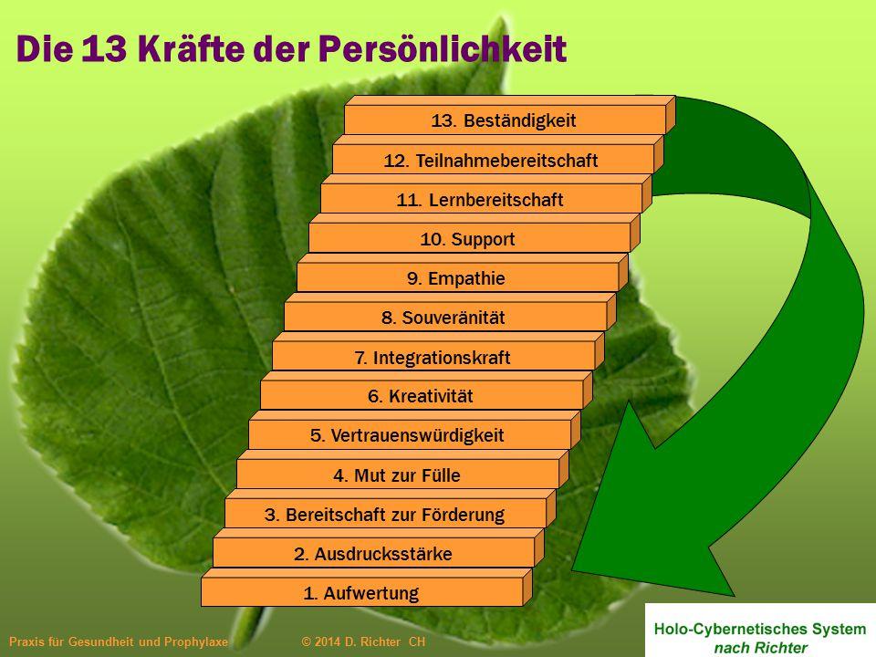 Praxis für Gesundheit und Prophylaxe © 2014 D. Richter CH 4. Mut zur Fülle 3. Bereitschaft zur Förderung 2. Ausdrucksstärke 1. Aufwertung 13. Beständi