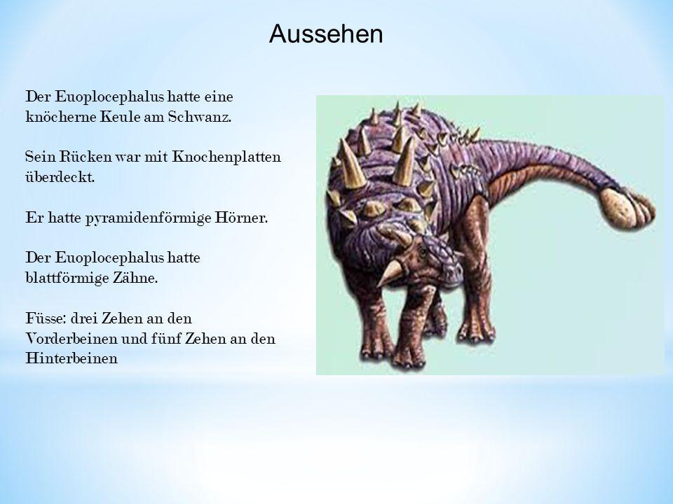 Aussehen Der Euoplocephalus hatte eine knöcherne Keule am Schwanz. Sein Rücken war mit Knochenplatten überdeckt. Er hatte pyramidenförmige Hörner. Der