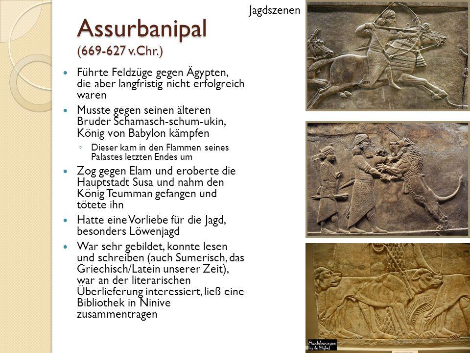 Assurbanipal (669-627 v.Chr.) Führte Feldzüge gegen Ägypten, die aber langfristig nicht erfolgreich waren Musste gegen seinen älteren Bruder Schamasch-schum-ukin, König von Babylon kämpfen ◦ Dieser kam in den Flammen seines Palastes letzten Endes um Zog gegen Elam und eroberte die Hauptstadt Susa und nahm den König Teumman gefangen und tötete ihn Hatte eine Vorliebe für die Jagd, besonders Löwenjagd War sehr gebildet, konnte lesen und schreiben (auch Sumerisch, das Griechisch/Latein unserer Zeit), war an der literarischen Überlieferung interessiert, ließ eine Bibliothek in Ninive zusammentragen Jagdszenen
