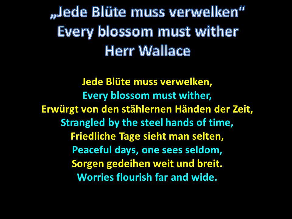 Der Lebenskampf ist für alle gleich.The struggle of life is the same for all.
