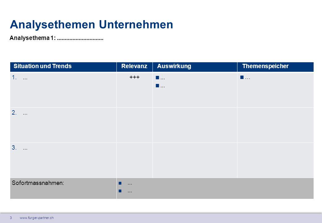 4 www.furger-partner.ch Analysethemen Unternehmen Situation und TrendsRelevanzAuswirkungThemenspeicher 1....