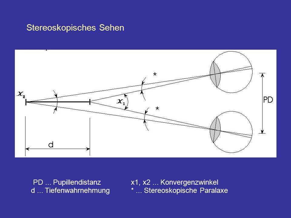 Stereoskopisches Sehen PD... Pupillendistanzx1, x2... Konvergenzwinkel d... Tiefenwahrnehmung *... Stereoskopische Paralaxe