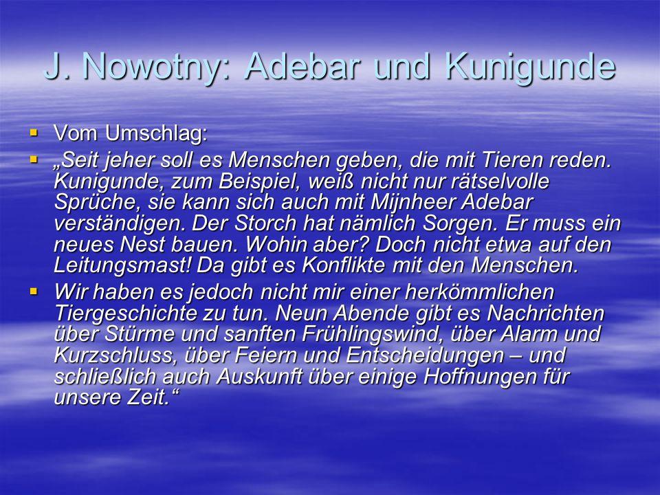 """J. Nowotny: Adebar und Kunigunde  Vom Umschlag:  """"Seit jeher soll es Menschen geben, die mit Tieren reden. Kunigunde, zum Beispiel, weiß nicht nur r"""
