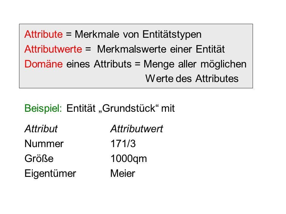 """Attribute = Merkmale von Entitätstypen Attributwerte = Merkmalswerte einer Entität Domäne eines Attributs = Menge aller möglichen Werte des Attributes Beispiel: Entität """"Grundstück mit AttributAttributwert Nummer171/3 Größe1000qm EigentümerMeier"""