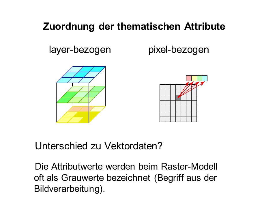Zuordnung der thematischen Attribute Unterschied zu Vektordaten? Die Attributwerte werden beim Raster-Modell oft als Grauwerte bezeichnet (Begriff aus