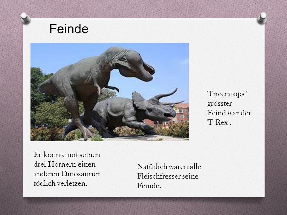 Feinde Triceratops` grösster Feind war der T-Rex.