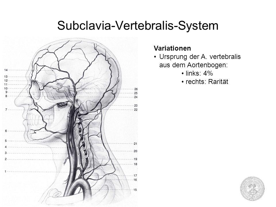 Subclavia-Vertebralis-System Variationen Ursprung der A. vertebralis aus dem Aortenbogen: links: 4% rechts: Rarität