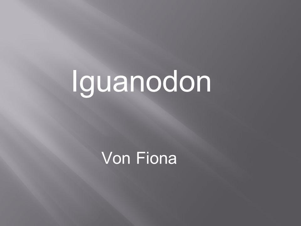 Iguanodon Von Fiona