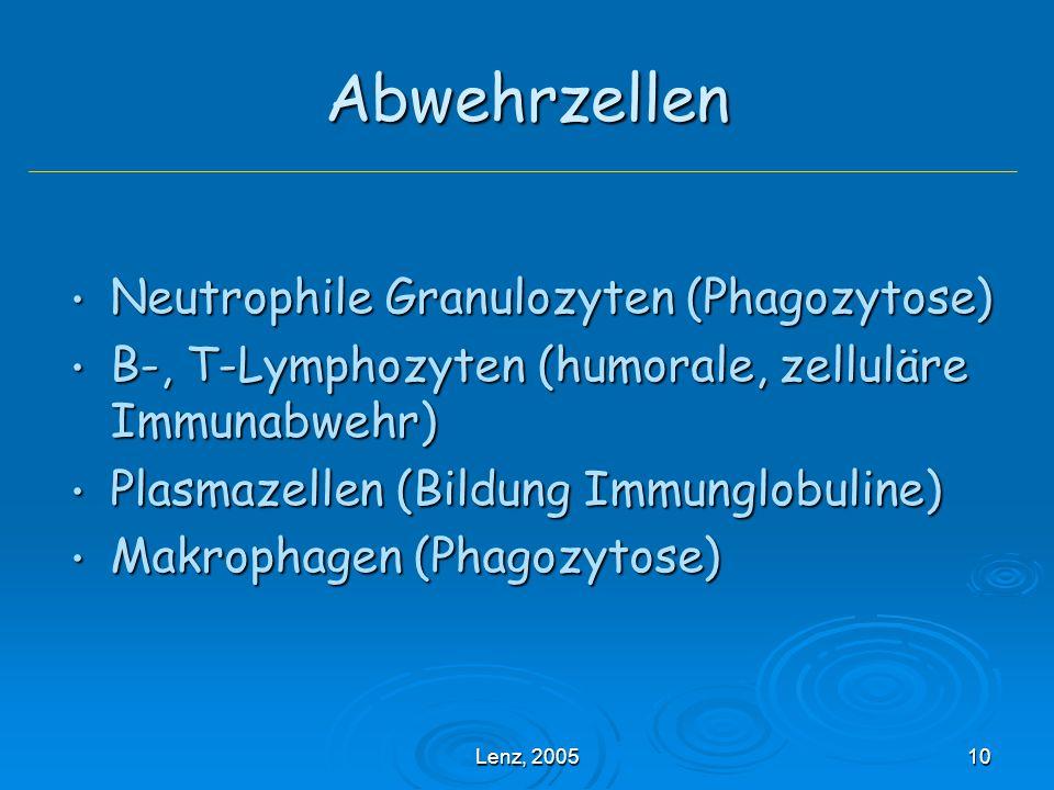 Lenz, 200510 Abwehrzellen Neutrophile Granulozyten (Phagozytose) Neutrophile Granulozyten (Phagozytose) B-, T-Lymphozyten (humorale, zelluläre Immunabwehr) B-, T-Lymphozyten (humorale, zelluläre Immunabwehr) Plasmazellen (Bildung Immunglobuline) Plasmazellen (Bildung Immunglobuline) Makrophagen (Phagozytose) Makrophagen (Phagozytose)