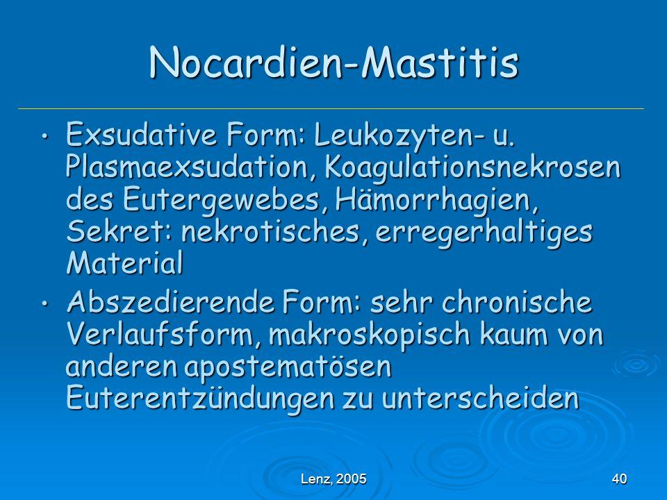 Lenz, 200540 Nocardien-Mastitis Exsudative Form: Leukozyten- u.