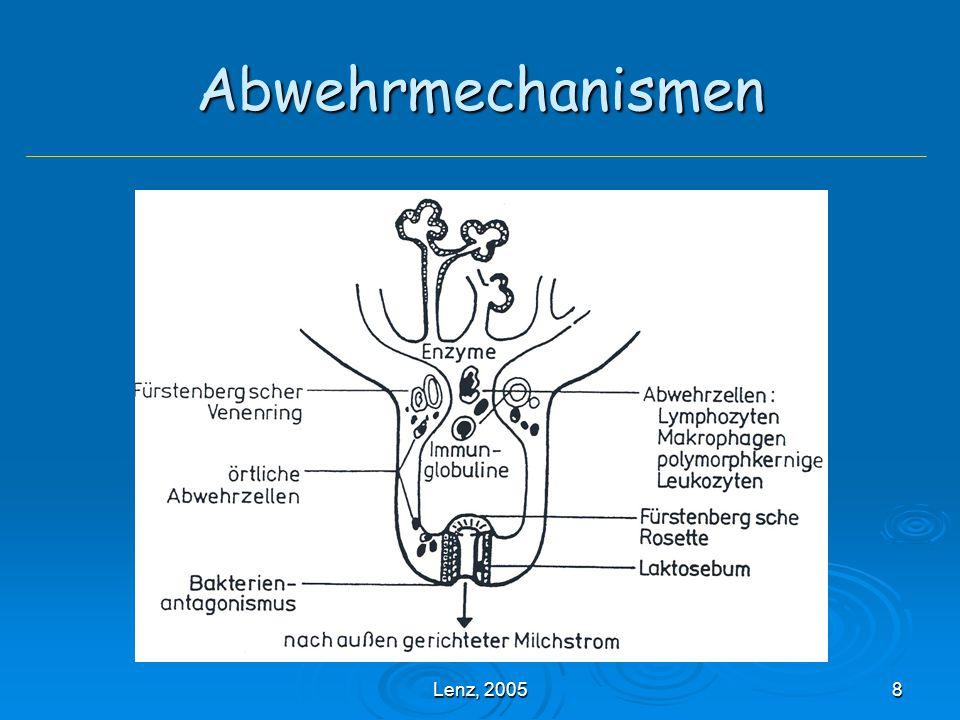 Lenz, 200519 Mastitiden - Einteilung Problem: Problem: unterschiedliche Erreger verursachen gleiche Entzündungsformen und ein Erreger kann unterschiedliche Gewebereaktionen hervorrufen Unspezifische/Granulomatöse Mastitiden