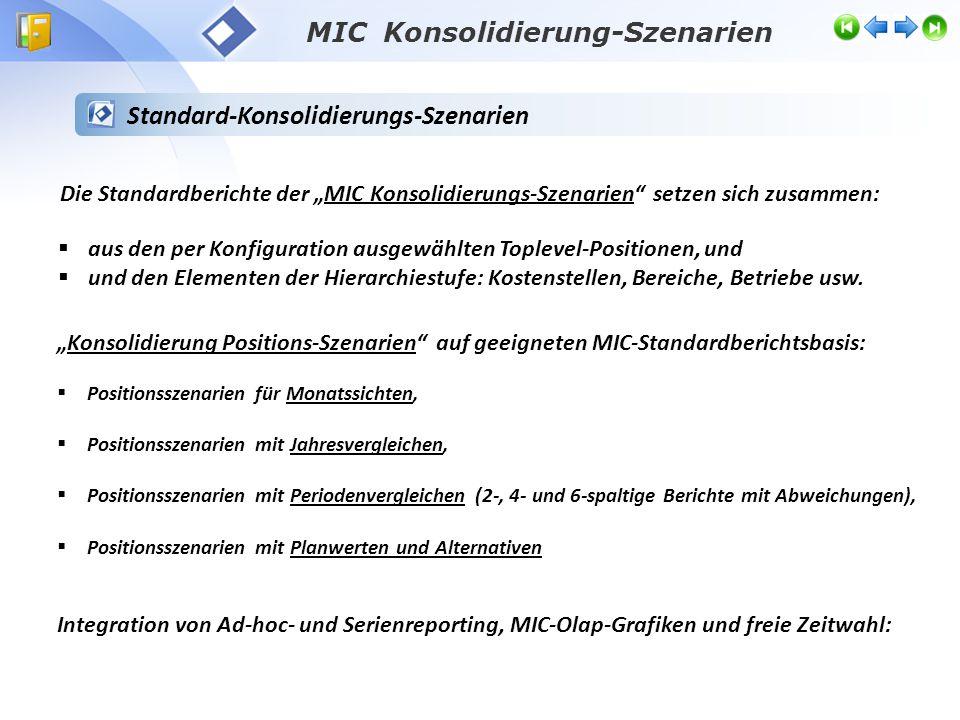 Toplevel Reporting-Standards Konsolidierung Anwendungsbeispiel: Konsolidierung von Landesverbänden - Eigenständige Unternehmen/Verbände - MIC Konsolidierung-Szenarien