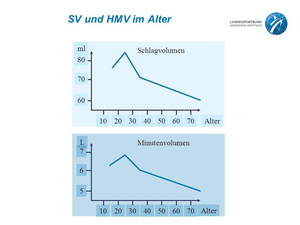 SV und HMV im Alter ml Alter1020304050 60 70 60 70 80 L Alter 10203040506070 5 6 7 Schlagvolumen Minutenvolumen