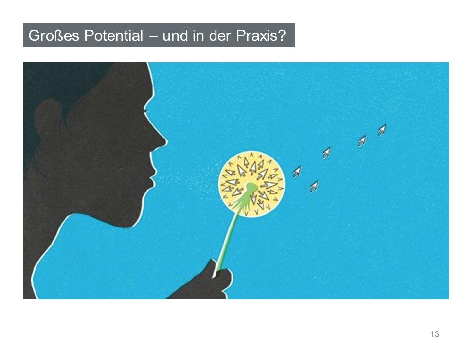 Großes Potential – und in der Praxis 13