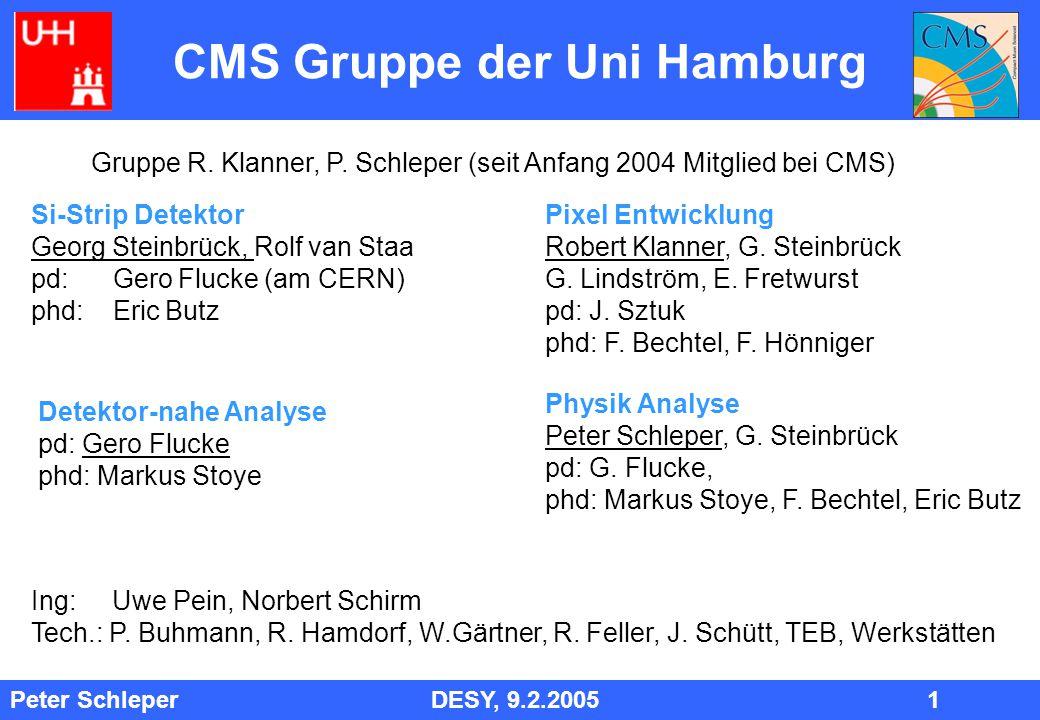 Peter Schleper DESY, 9.2.2005 2 Physik-Analyse Entdeckungs- Potential für M squark bis zu mehreren 1000 GeV S-LHC EW Symmetrie-Brechung: Higgs, Supersymmetrie  Entscheidend für Zukunft HEP Large Extra Dimensions, Neue Eichbosonen Supersymmetrie: großes Entdeckungspotential, Modell-unabhängig: Squarks GMSB: LSP = Gravitino, s-tau = NLSP, Signatur: Zerfallsketten mit Leptonen, vornehmlich tau 100 Ereignisse Bisher: GMSB Simulationen Lepton Spektren Entdeckungspotential Tau Identifizierung (auch bei ZEUS)
