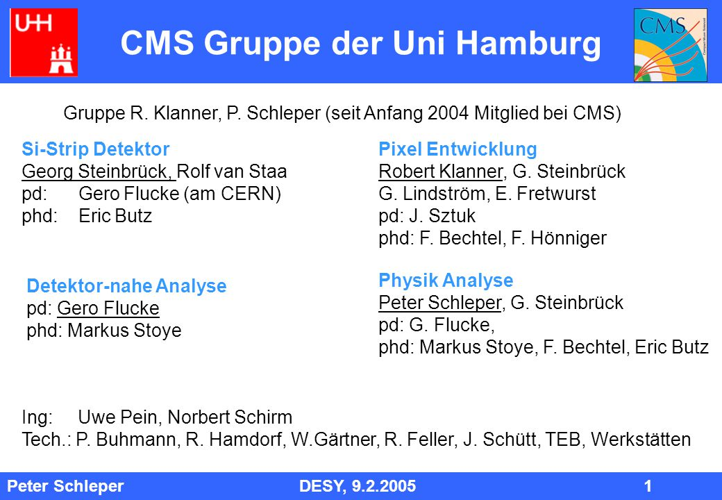 Peter Schleper DESY, 9.2.2005 1 Pixel Entwicklung Robert Klanner, G.