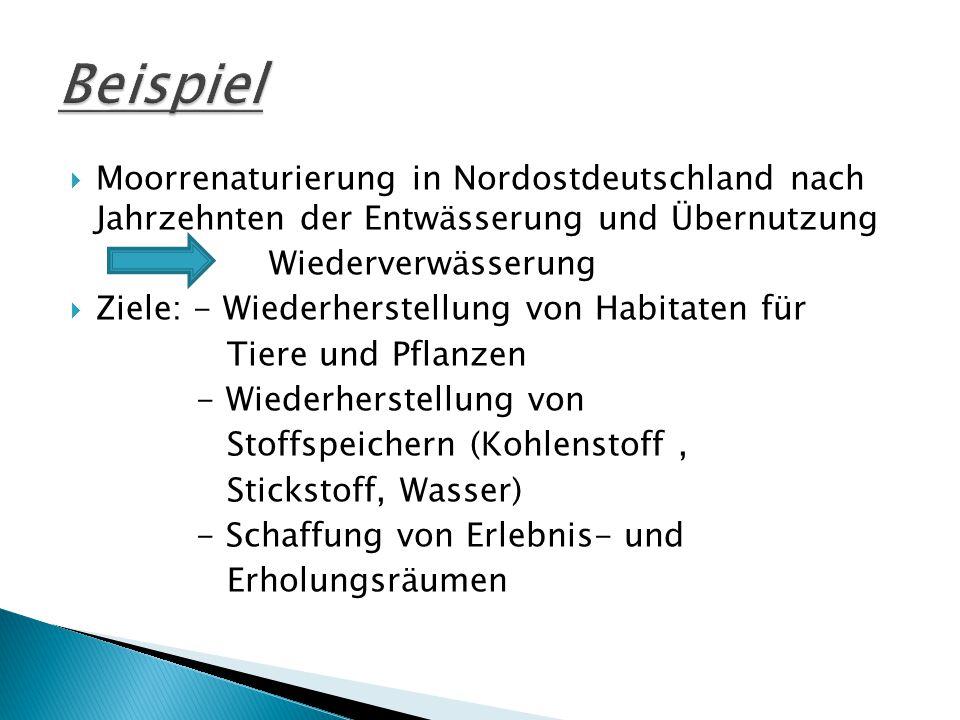  Moorrenaturierung in Nordostdeutschland nach Jahrzehnten der Entwässerung und Übernutzung Wiederverwässerung  Ziele: - Wiederherstellung von Habitaten für Tiere und Pflanzen - Wiederherstellung von Stoffspeichern (Kohlenstoff, Stickstoff, Wasser) - Schaffung von Erlebnis- und Erholungsräumen