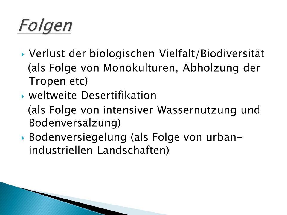  Verlust der biologischen Vielfalt/Biodiversität (als Folge von Monokulturen, Abholzung der Tropen etc)  weltweite Desertifikation (als Folge von intensiver Wassernutzung und Bodenversalzung)  Bodenversiegelung (als Folge von urban- industriellen Landschaften)