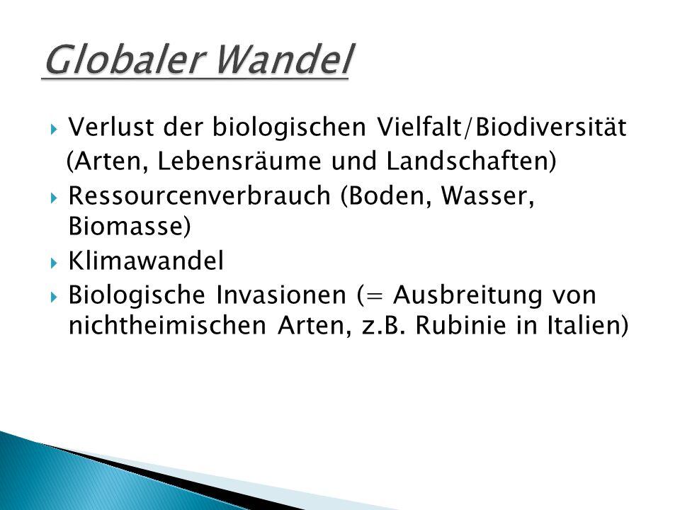  Verlust der biologischen Vielfalt/Biodiversität (Arten, Lebensräume und Landschaften)  Ressourcenverbrauch (Boden, Wasser, Biomasse)  Klimawandel  Biologische Invasionen (= Ausbreitung von nichtheimischen Arten, z.B.