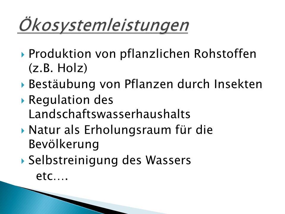  Produktion von pflanzlichen Rohstoffen (z.B.