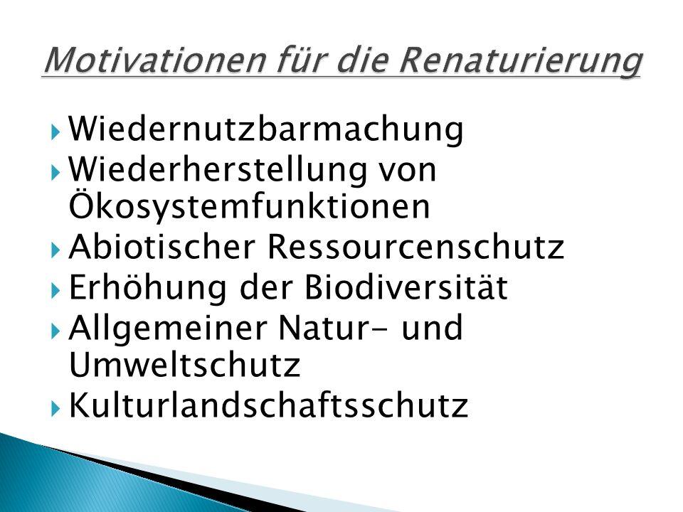  Wiedernutzbarmachung  Wiederherstellung von Ökosystemfunktionen  Abiotischer Ressourcenschutz  Erhöhung der Biodiversität  Allgemeiner Natur- und Umweltschutz  Kulturlandschaftsschutz