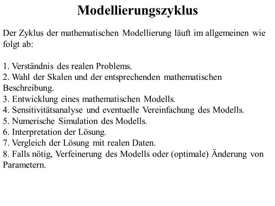 Modellierungszyklus Der Zyklus der mathematischen Modellierung läuft im allgemeinen wie folgt ab: 1. Verständnis des realen Problems. 2. Wahl der Skal