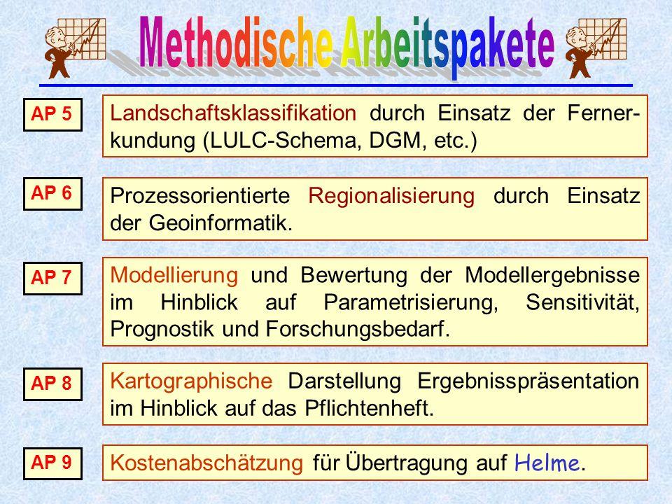 Prozessorientierte Regionalisierung durch Einsatz der Geoinformatik. AP 6 Landschaftsklassifikation durch Einsatz der Ferner- kundung (LULC-Schema, DG
