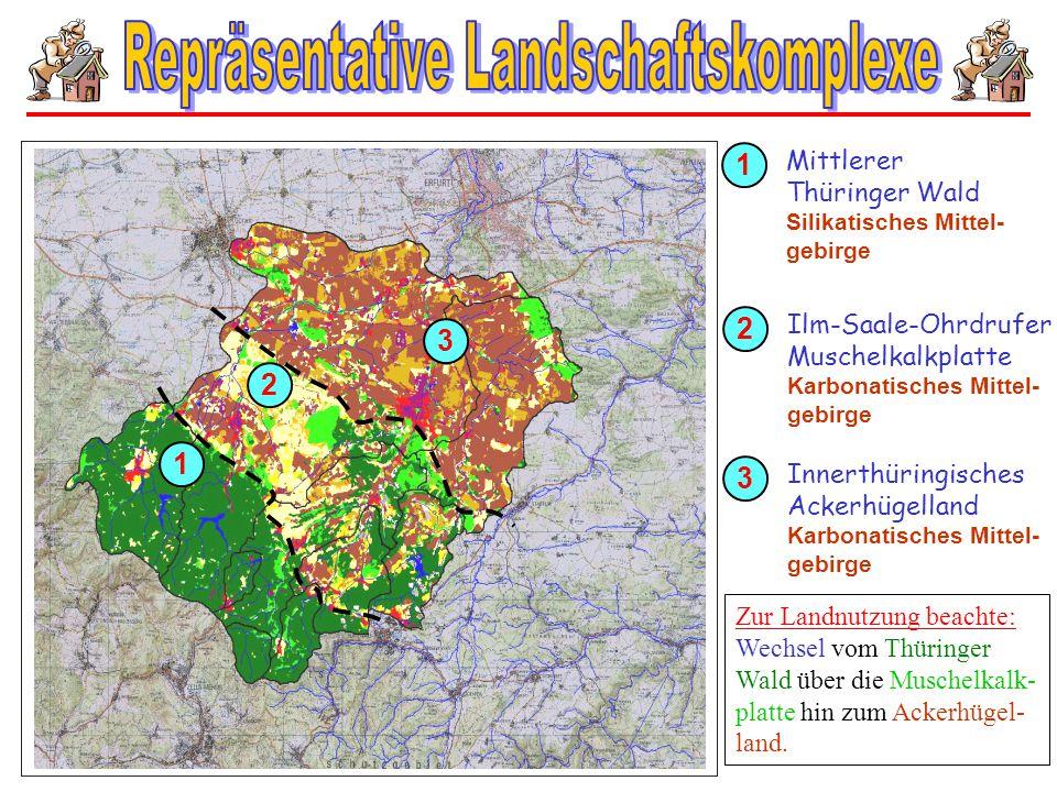 3 2 1 1 Mittlerer Thüringer Wald Silikatisches Mittel- gebirge 2 Ilm-Saale-Ohrdrufer Muschelkalkplatte Karbonatisches Mittel- gebirge 3 Innerthüringis
