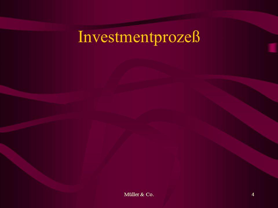 Müller & Co.5 Charakteristika der Investments Kaufen/Verkaufen Sektor Verteilung
