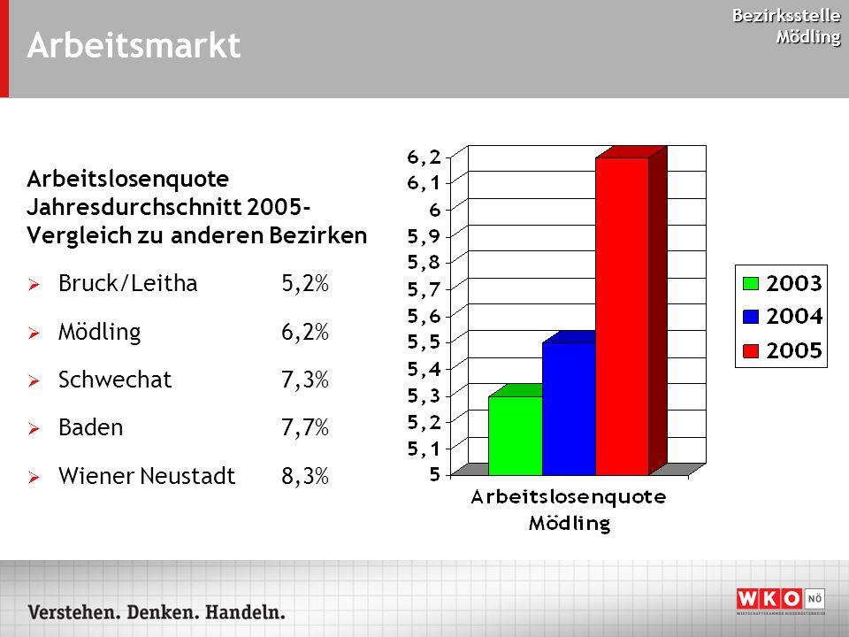 Bezirksstelle Mödling Arbeitsmarkt Arbeitslosenquote Jahresdurchschnitt 2005- Vergleich zu anderen Bezirken  Bruck/Leitha 5,2%  Mödling 6,2%  Schwechat 7,3%  Baden 7,7%  Wiener Neustadt8,3%