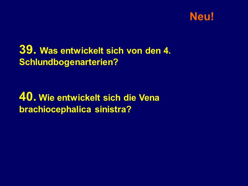 Neu! 39. Was entwickelt sich von den 4. Schlundbogenarterien? 40. Wie entwickelt sich die Vena brachiocephalica sinistra?