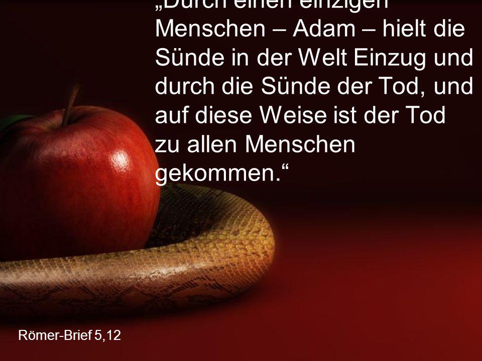 """Römer-Brief 5,12 """"Durch einen einzigen Menschen – Adam – hielt die Sünde in der Welt Einzug und durch die Sünde der Tod, und auf diese Weise ist der Tod zu allen Menschen gekommen."""