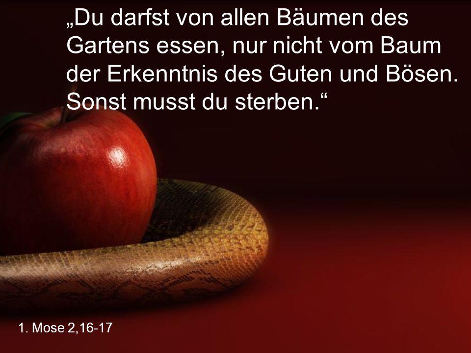 """1. Mose 2,16-17 """"Du darfst von allen Bäumen des Gartens essen, nur nicht vom Baum der Erkenntnis des Guten und Bösen. Sonst musst du sterben."""""""