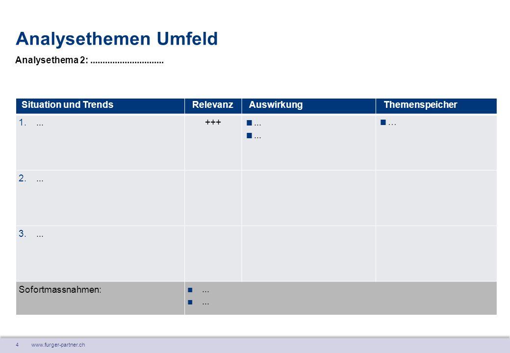4 www.furger-partner.ch Analysethemen Umfeld Situation und TrendsRelevanzAuswirkungThemenspeicher 1....
