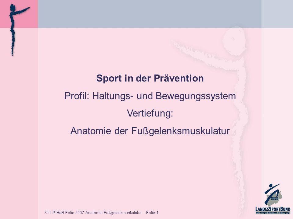 311 P-HuB Folie 2007 Anatomie Fußgelenkmuskulatur - Folie 1 Sport in der Prävention Profil: Haltungs- und Bewegungssystem Vertiefung: Anatomie der Fußgelenksmuskulatur
