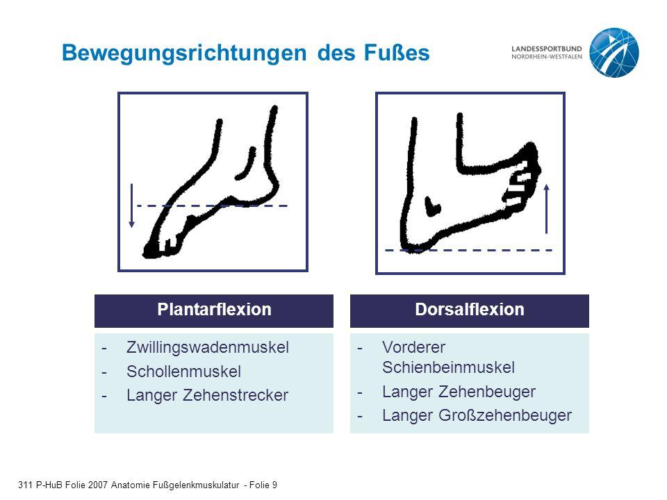 Bewegungsrichtungen des Fußes 311 P-HuB Folie 2007 Anatomie Fußgelenkmuskulatur - Folie 9 DorsalflexionPlantarflexion -Zwillingswadenmuskel -Schollenmuskel -Langer Zehenstrecker -Vorderer Schienbeinmuskel -Langer Zehenbeuger -Langer Großzehenbeuger