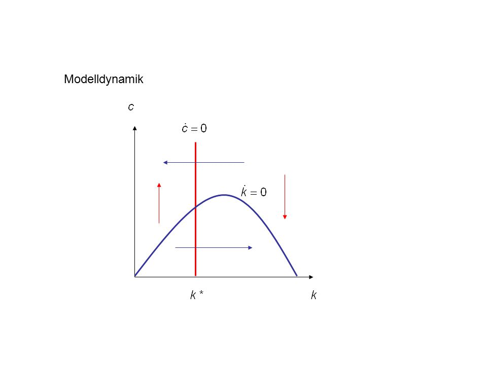 Modelldynamik