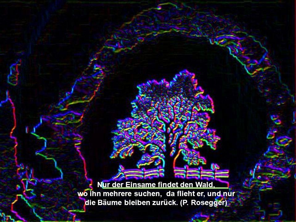 Grau lieber Freund, ist alle Theorie, und grün des Lebens goldener Baum (J.W. von Goethe, Faust 1)