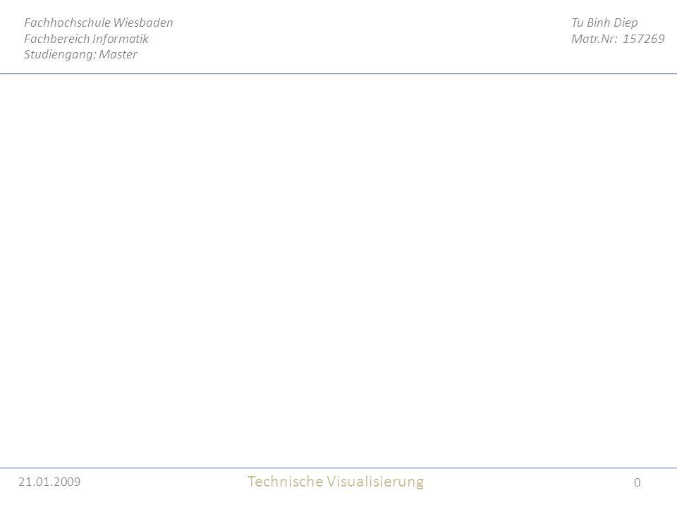 21.01.2009 0 Tu Binh Diep Matr.Nr: 157269 Fachhochschule Wiesbaden Fachbereich Informatik Studiengang: Master Technische Visualisierung 21.01.2009