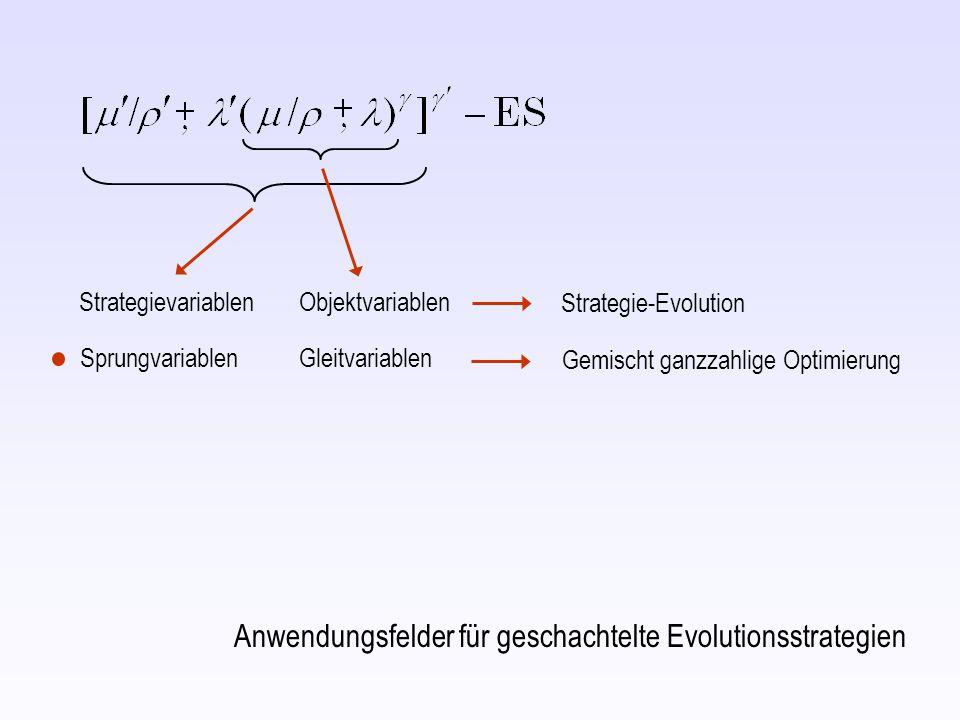 Strategievariablen Objektvariablen Strategie-Evolution Anwendungsfelder für geschachtelte Evolutionsstrategien SprungvariablenGleitvariablen Gemischt ganzzahlige Optimierung