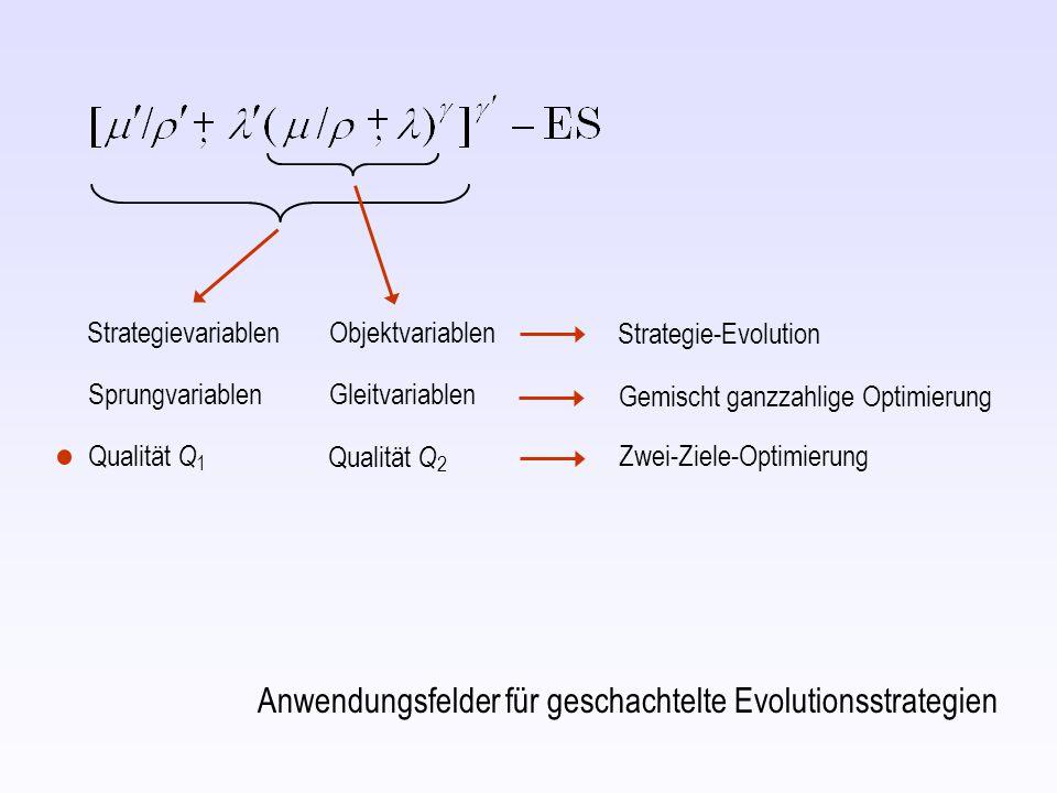 Strategievariablen Objektvariablen SprungvariablenGleitvariablen Strategie-Evolution Gemischt ganzzahlige Optimierung Anwendungsfelder für geschachtelte Evolutionsstrategien Qualität Q 1 Qualität Q 2 Zwei-Ziele-Optimierung
