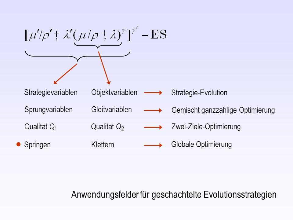 Strategievariablen Objektvariablen SprungvariablenGleitvariablen Qualität Q 1 Qualität Q 2 Strategie-Evolution Gemischt ganzzahlige Optimierung Zwei-Ziele-Optimierung Anwendungsfelder für geschachtelte Evolutionsstrategien Springen Klettern Globale Optimierung