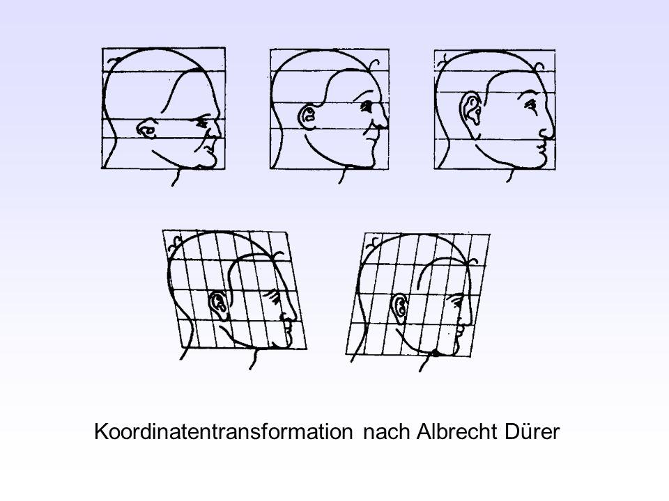 Koordinatentransformation nach Albrecht Dürer