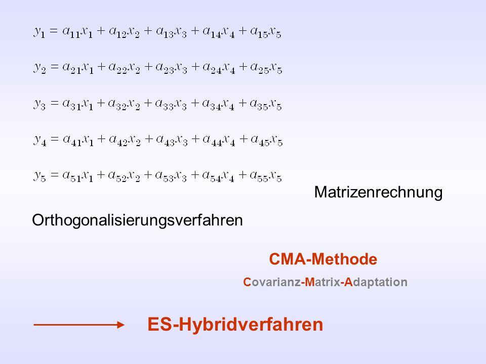 Orthogonalisierungsverfahren Matrizenrechnung CMA-Methode ES-Hybridverfahren Covarianz-Matrix-Adaptation
