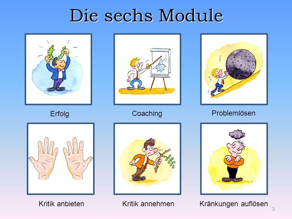 Die sechs Module 3 Problemlösen Coaching Erfolg Kritik annehmenKränkungen auflösenKritik anbieten